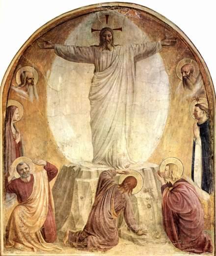 fraangelica transfiguration