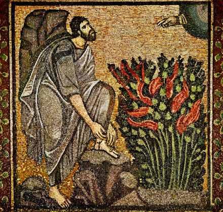 moses bush mosaic