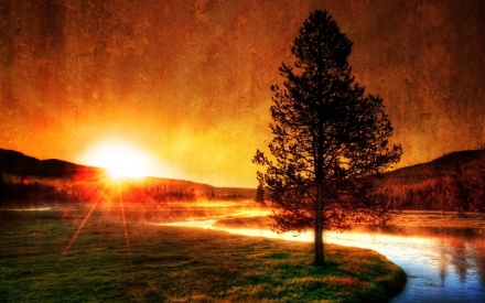 evening_river_tree_sun_fog_beams_8213_2560x1600