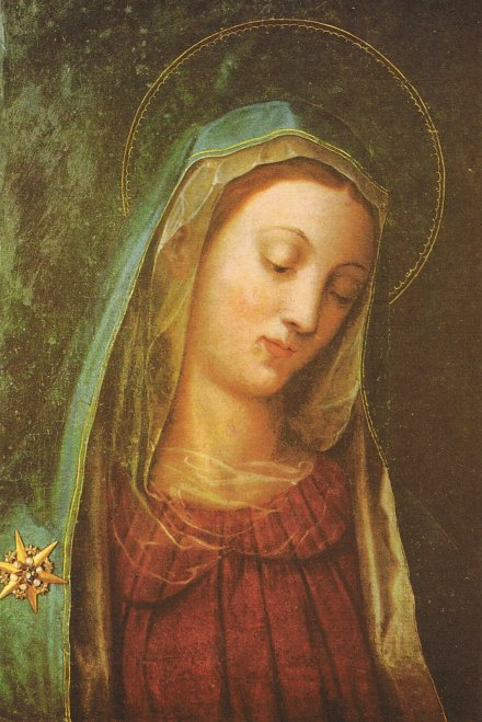Our Lady Mother of Divine Grace 2