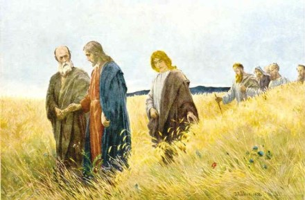 Jesus in a field of wheat.jpg